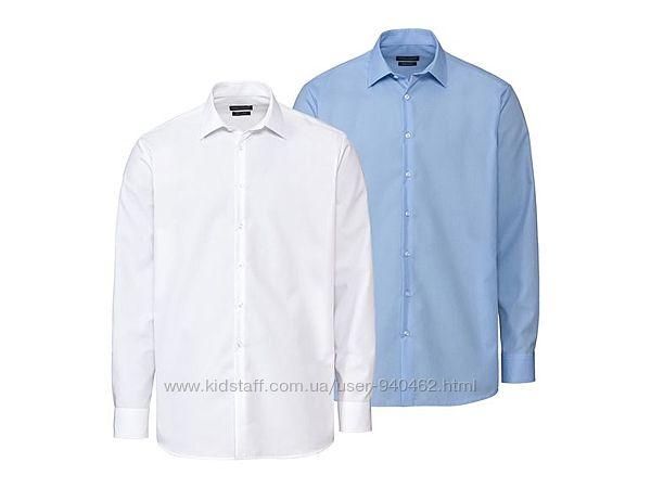 Набор мужских рубашек 2шт Livergy