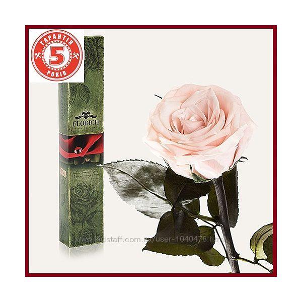 #2: Розовый жемчуг