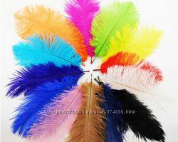 Перья страуса, страусиные перья