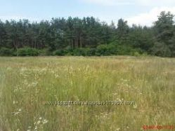 участок Русанов 12сот, лес, речка, под застройку