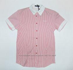 Рубашка ТМ Van Vincent