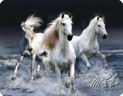 Магниты с лошадками