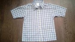 Рубашка летняя, белая в клеточку, короткий рукав