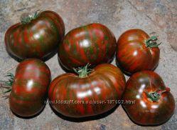 Семена - насiння проверенных томатов, помидоров.