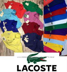 Мужские поло в наличии Lacoste 100 хлопок  Супер качество