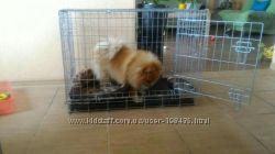 Переноска, клетка, домик для собак Италия CROCI 64х48х54h см