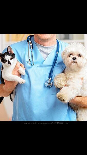 Ветеринар, выезд на дом. Харьков и область