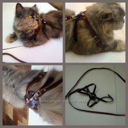 Шлейки кожаные для кошек по супер цене