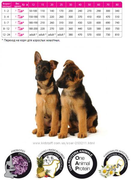 Итальянские корма супер-премиум класса TRAINER для собак и кошек