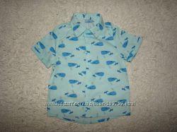 Фирменные регланы, рубашки, кофты на 9-12 месяцев