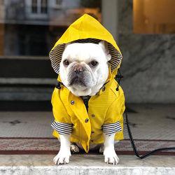 Дождевик ветровка куртка одежда для собак французского бульдога комбинезон