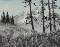 Картина масло холст 40х50