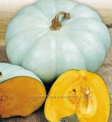 Семена универсального сорта тыквы Волжская серая  -