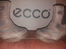 Ботинки осенние Ecco 23