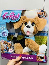 Интерактивный говорящий щенок Чарли FurReal Friends породы бигль от Hasbro