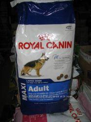 Royal Canin Maxi Adult Роял Канин Макси Эдалт корм для собак крупных пород