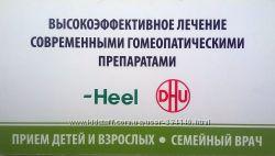 Гомеопатические препараты Heel Цены ниже аптечных