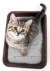 Кошачий наполнитель цеолит 1л