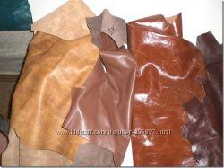 #5: образцы кожи