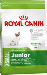 Royal canin Adult Junior x-small 3kg