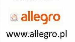 ������� �� Allegro ������