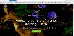 Создам сайт, интернет магазин за 24 часа-1000 грн. Консультация бесплатно
