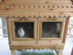Клетка для декоративного кролика. Клетка для грызунов. Делаем зимние вариан