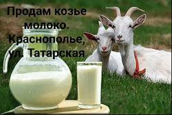 Козье молоко, перепелиные яйца г. Днепр Краснополье ул. Татарская