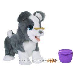 Интерактивная игрушка Hasbro щенок Рикки FurReal Friends Ricky