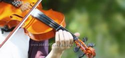Уроки скрипки музыкальная школа скрипка