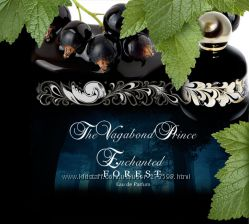 the vagabond prince enchanted forest, ниша, распив