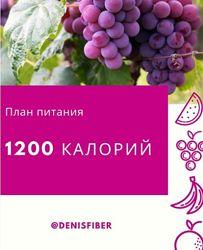 DenisFiber План питания 1200 калорий