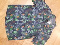 Рубашка летняя для мальчика C&A - 134-140, 146-152