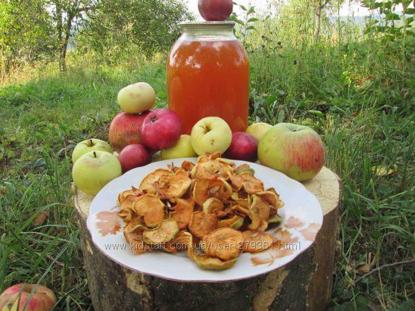 Сок яблочный домашний с горного сада Карпат.