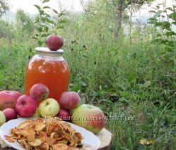 Уксус яблочный домашний натуральный