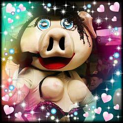 Свинка - стриптизерша и друзья