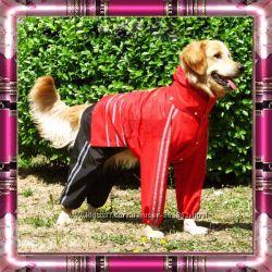 Комбинезоны и дождевики для средних и крупных пород собак. В наличии.