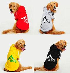 Толстовки Adidog для собак средних и крупных пород. Одежда для собак.