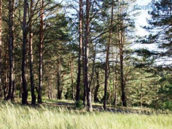 продам свой земельный участок возле Боярки